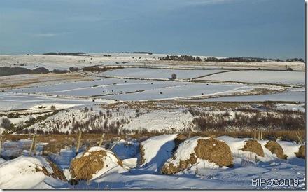Strines - Bradfield Moor - Snow - 6-02-09